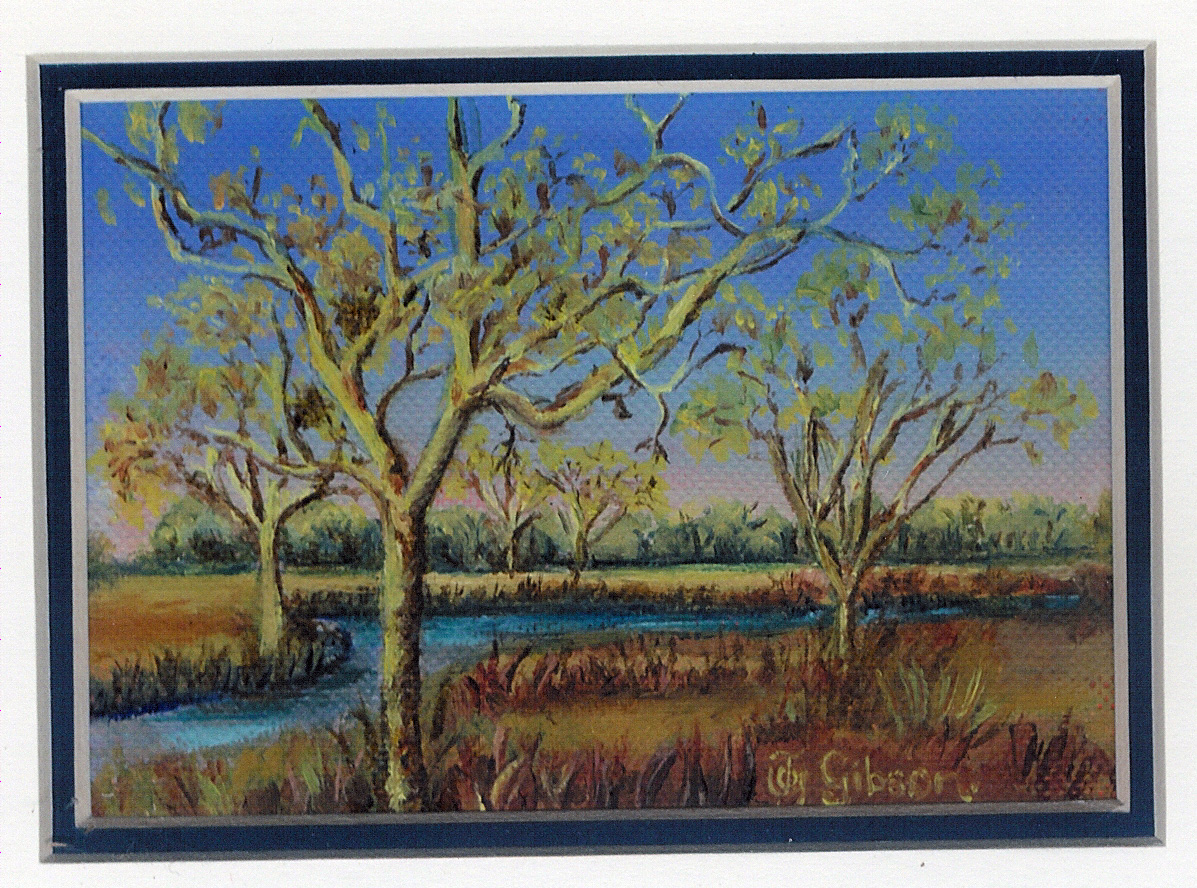 9 Yellow Fever Tree by Joy Gibson - Oil on Canvas Board