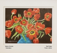 christie-valerie-red-tulips