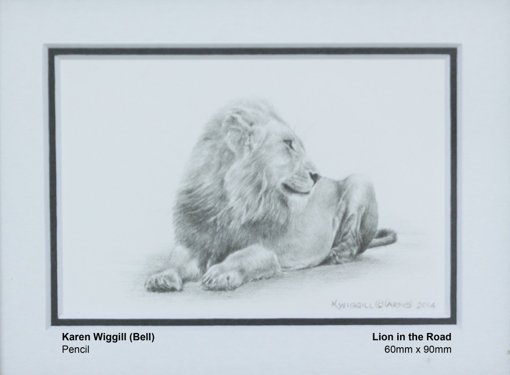 wiggill-bell-karen-lion-in-the-road