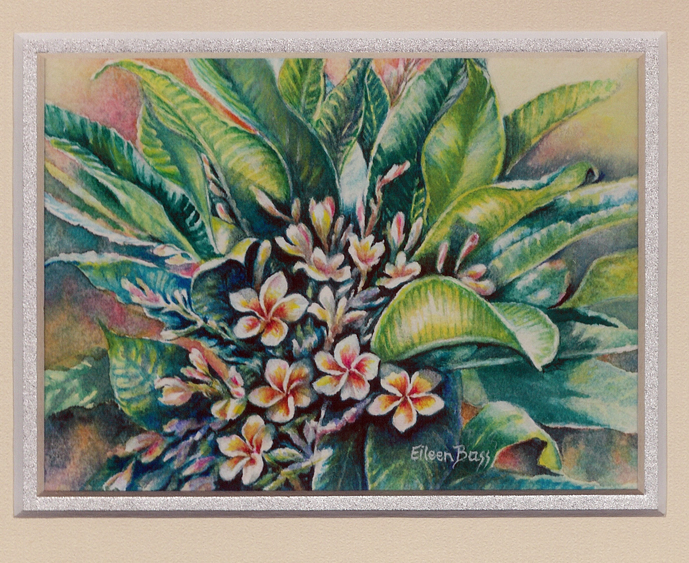 16 Frangipani by Eileen Bass - Watercolour
