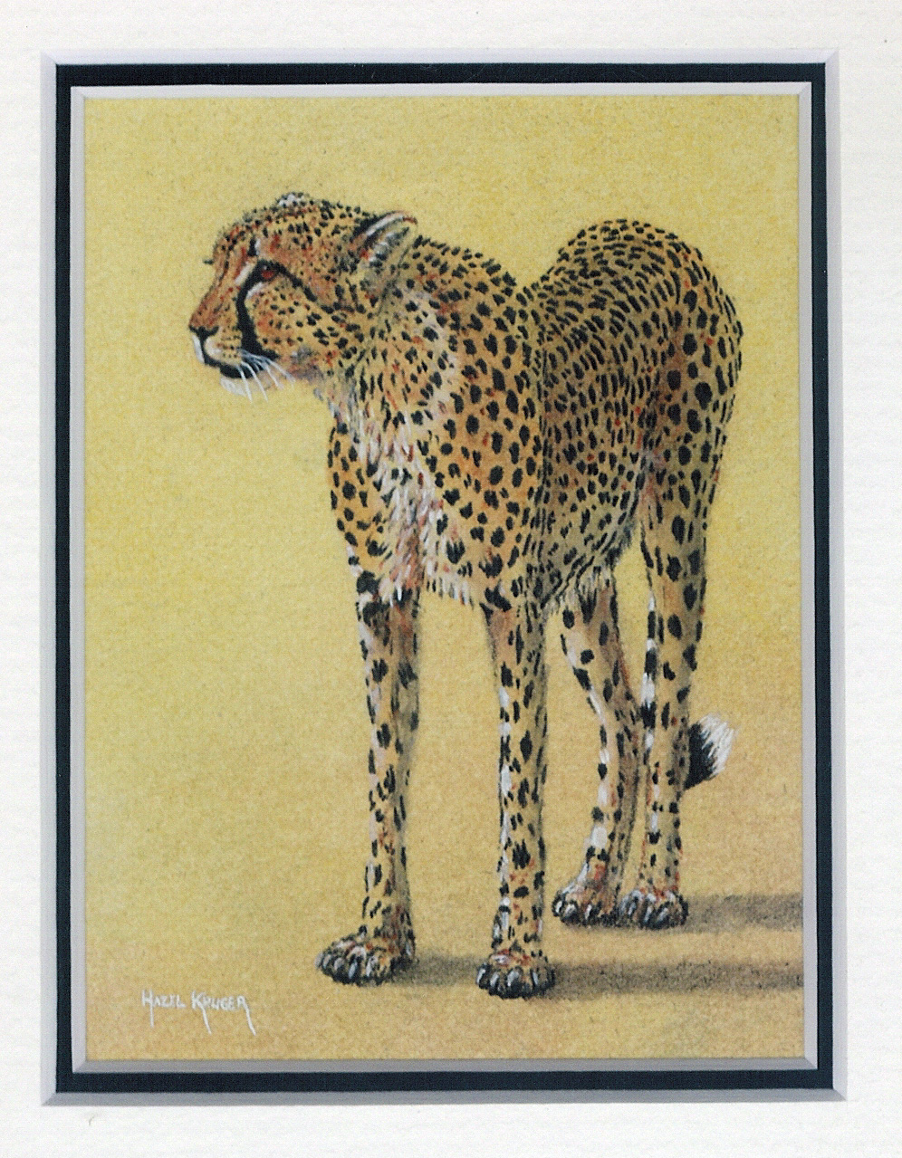 42 Cheetah by Hazel Kruger - Watercolour