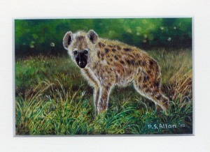 51 Baby Hyena by Paul Allen - Oil on refined canvas