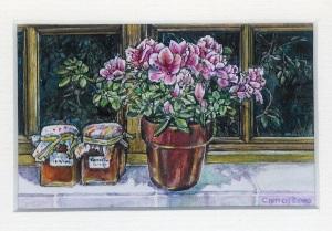 55 Apricot Jam & Azaleas by Carrol Evans - Watercolour & Ink