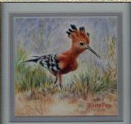 15 African Hoopoe by Eileen Bass - Watercolour