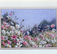 20 Cosmos by Val Christie - Watercolour