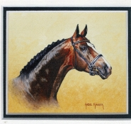 43 Thoroughbred by Hazel Kruger - Watercolour