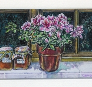 55 Apricot Jam & Azaleas by Carrol Evans - Watercolour & Ink