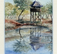 73 The Hide by Leonora de Lange - Watercolour