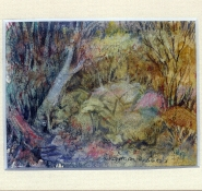 82 Forest Colour by Charmian Kennealy - Mixed Media
