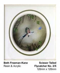 beth-freeman-kane-2