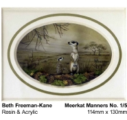 beth-freeman-kane-3