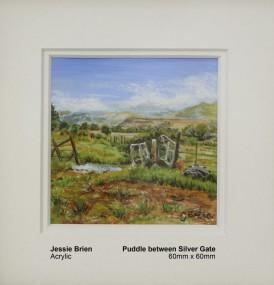brien-jessie-puddle-between-silver-gate