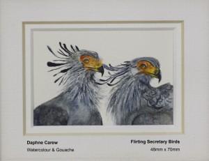 carew-daphne-flirting-secretary-birds
