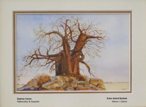 carew-daphne-kubu-island-baobab