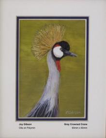 gibson-joy-grey-crowned-crane