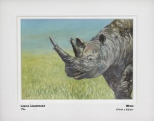 goudemond-louise-rhino