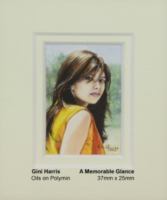 harris-gini-a-memorable-glance