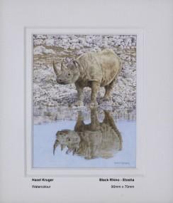 kruger-hazel-black-rhino-etosha