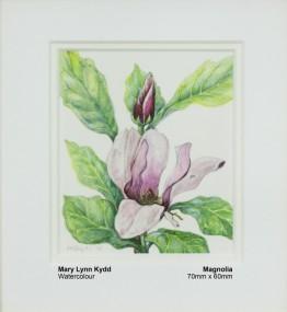 kydd-mary-lynn-magnolia