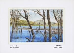 ludwig-ann-still-waters