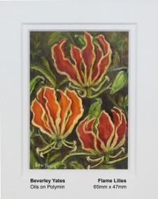 yates-beverley-flame-lilies