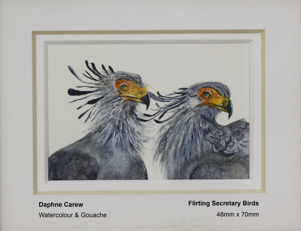 carew-daphne-flirting-secretary-birds