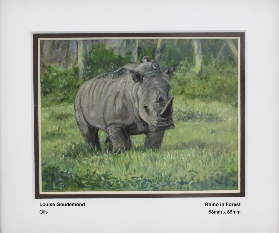 goudemond-louise-rhino-in-forest