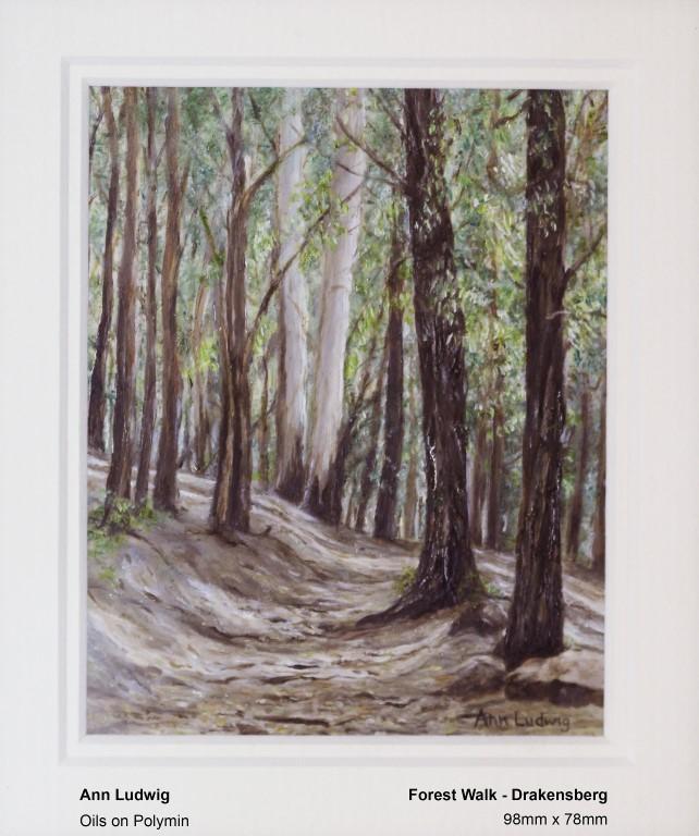 ludwig-ann-forest-walk-drakensberg