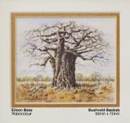 bass-eileen-bushveld-baobab