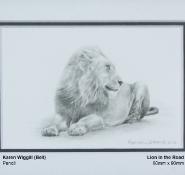 wiggill-bell-karen-lion-in-the-road