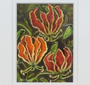 yates-beverley-flame-lilies