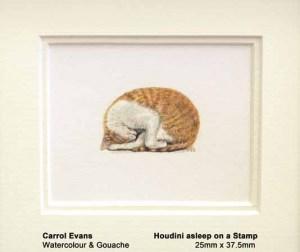 Houdini asleep on a stamp