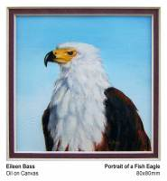 Portrait of a Fish Eagle