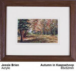 Autumn in Kaapsehoop