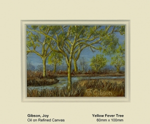 African yellow fever tree