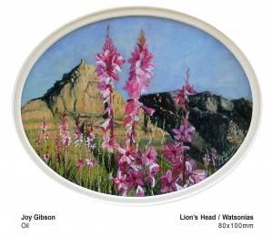 Lion's head - Watsonia's