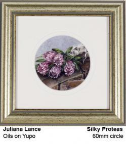 Silky Proteas