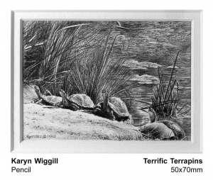 Terrific terrapins