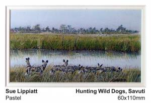 Hunting Wild Dogs