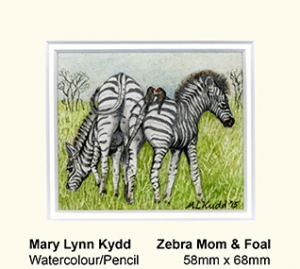 Zebra mom & foal