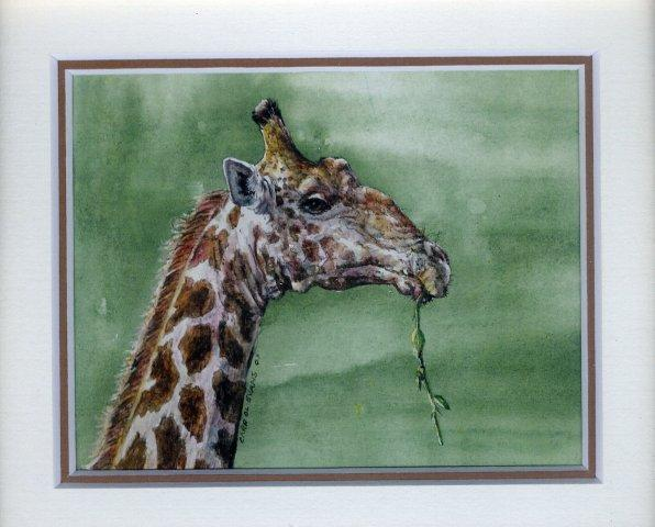 22 Giraffe's Breakfast by Carrol Evans in Watercolour