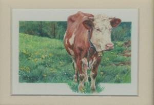 63 Meadowsweet by Catherine Kraetschmer in Watercolour & Gouache