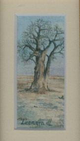 74 Baobad by Leonora de Lange in Watercolour